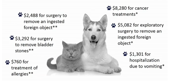 Estimated Pet Injury and Illness Chart